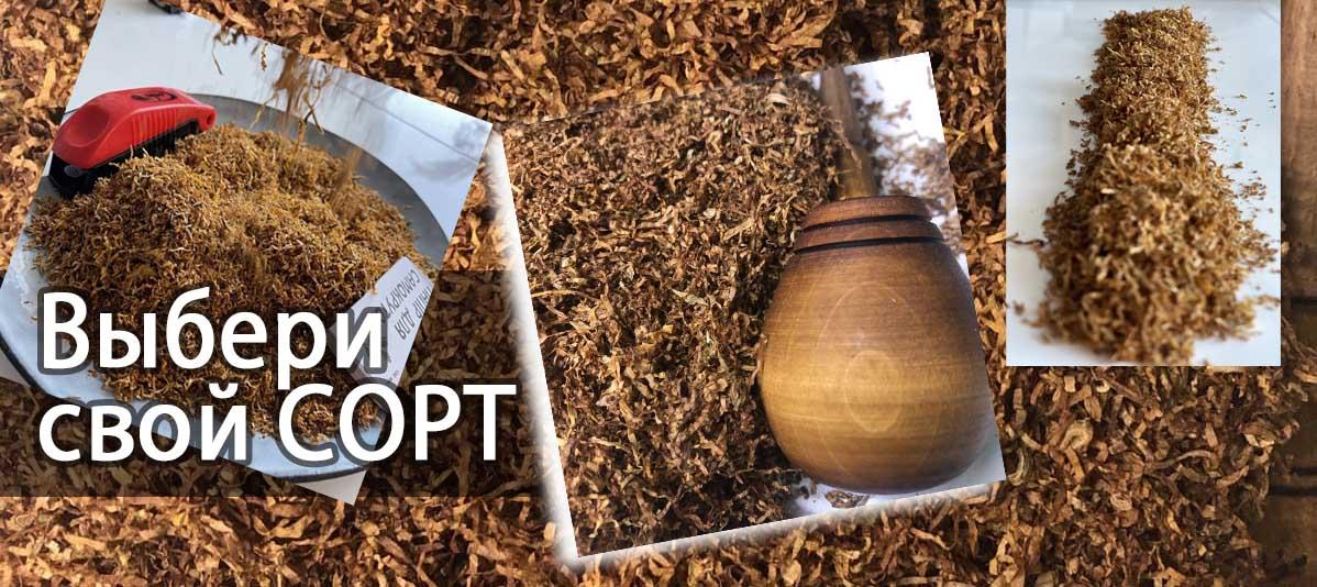 Выбор сорта табака